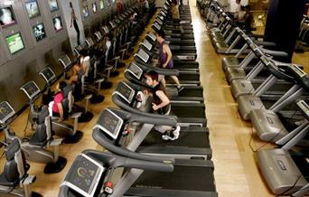 Runners in the gym